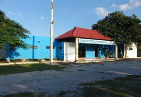 Foto de edificio en renta en xcumpich , xcumpich, mérida, yucatán, 5712385 No. 01