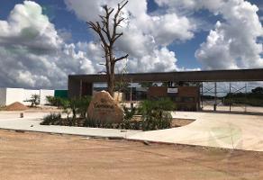 Foto de terreno habitacional en venta en  , xcuyun, conkal, yucatán, 10478437 No. 01