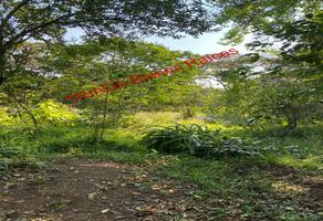 Foto de terreno habitacional en venta en xico whi271763, xico, xico, veracruz de ignacio de la llave, 0 No. 01