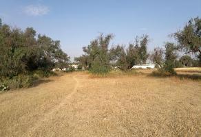Foto de terreno habitacional en venta en  , xochihuacán, epazoyucan, hidalgo, 10974096 No. 01