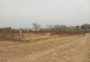 Foto de terreno habitacional en venta en  , xochitlán, yecapixtla, morelos, 12949487 No. 01
