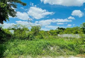 Foto de terreno habitacional en venta en  , xoclan susula, mérida, yucatán, 0 No. 01