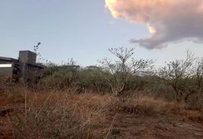 Foto de terreno habitacional en venta en xolatlahco , loma bonita, tepoztlán, morelos, 15129023 No. 01