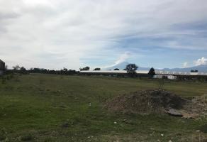 Foto de terreno habitacional en venta en xoxtla 1, san miguel xoxtla, san miguel xoxtla, puebla, 0 No. 01