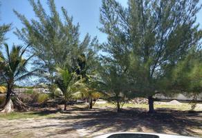 Foto de terreno habitacional en venta en xtul , chuburna puerto, progreso, yucatán, 0 No. 01