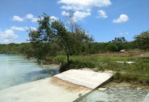 Foto de terreno habitacional en venta en  , xul-ha, othón p. blanco, quintana roo, 0 No. 01