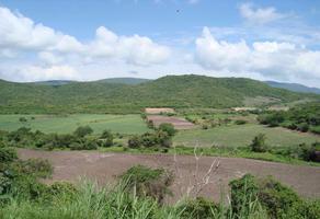 Foto de terreno comercial en venta en xx , tlaltizapan de pacheco, tlaltizapán de zapata, morelos, 0 No. 01
