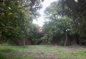 Foto de terreno comercial en venta en xxx , la antigua, yautepec, morelos, 0 No. 01
