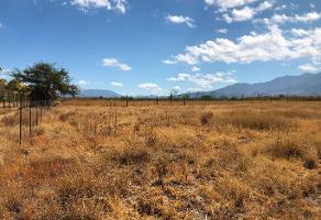 Foto de terreno habitacional en venta en yagul 102 , ciudad yagul, tlacolula de matamoros, oaxaca, 12182410 No. 01