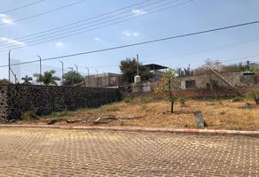 Foto de terreno habitacional en venta en yautepec , tlayacapan, tlayacapan, morelos, 19298785 No. 01