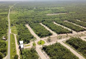 Foto de terreno habitacional en venta en  , yaxche de peón, ucú, yucatán, 13188532 No. 01