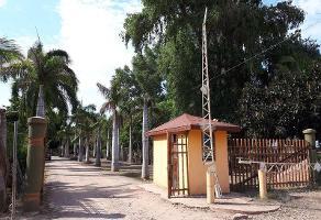 Foto de terreno comercial en venta en  , yebavito, navolato, sinaloa, 0 No. 01