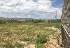Foto de terreno habitacional en venta en  , yerbabuena, guanajuato, guanajuato, 16896630 No. 01