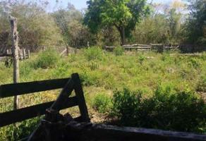 Foto de rancho en venta en  , yucatan, mérida, yucatán, 14177403 No. 01