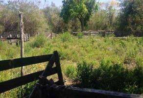 Foto de rancho en venta en  , yucatan, mérida, yucatán, 18461078 No. 01