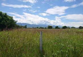 Foto de terreno habitacional en venta en yuridia , zaachila, villa de zaachila, oaxaca, 14264566 No. 01