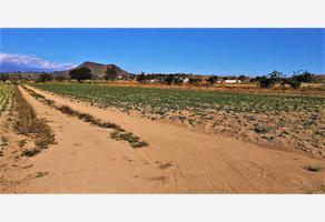 Foto de terreno comercial en venta en zacapechpan 1, cholula, san pedro cholula, puebla, 11117672 No. 01