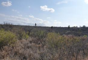 Foto de terreno comercial en venta en  , zacatecas, pesquería, nuevo león, 20009627 No. 01