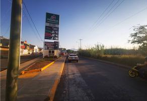 Foto de terreno comercial en venta en  , zamora de hidalgo centro, zamora, michoacán de ocampo, 0 No. 01
