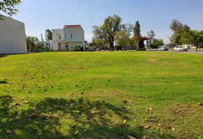 Foto de terreno habitacional en venta en  , zamora de hidalgo centro, zamora, michoacán de ocampo, 0 No. 01