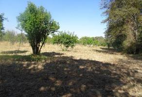 Foto de terreno habitacional en venta en zapotitla , san andrés hueyacatitla, san salvador el verde, puebla, 0 No. 01