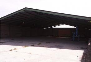 Foto de nave industrial en venta en  , zapotlan, atenco, méxico, 20395861 No. 01