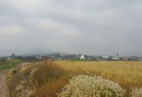 Foto de terreno comercial en venta en  , zapotlán de juárez centro, zapotlán de juárez, hidalgo, 10743082 No. 01