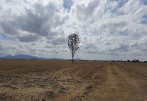 Foto de terreno comercial en venta en  , zapotlán de juárez centro, zapotlán de juárez, hidalgo, 10743085 No. 01