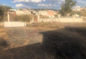 Foto de terreno habitacional en venta en zarzal de medina , las maravillas, león, guanajuato, 0 No. 01