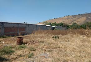 Foto de terreno habitacional en venta en  , zinapecuaro de figueroa centro, zinapécuaro, michoacán de ocampo, 16659290 No. 01