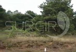 Foto de terreno habitacional en venta en  , zirahuen, salvador escalante, michoacán de ocampo, 6479582 No. 01