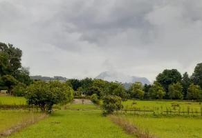 Foto de terreno habitacional en venta en  , zitacuaro centro, zitácuaro, michoacán de ocampo, 0 No. 01