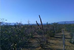 Foto de terreno habitacional en venta en  , zona central, la paz, baja california sur, 9356671 No. 01