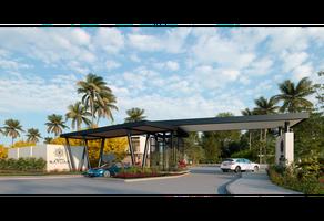 Foto de terreno habitacional en venta en  , zona hotelera norte, puerto vallarta, jalisco, 0 No. 01