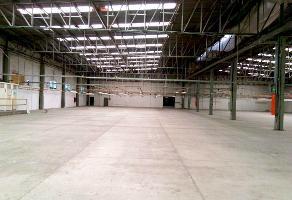 Foto de nave industrial en renta en  , zona industrial, guadalajara, jalisco, 14230665 No. 01