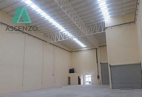 Foto de nave industrial en renta en  , zona industrial nombre de dios, chihuahua, chihuahua, 14160423 No. 01