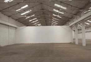 Foto de nave industrial en renta en  , zona industrial nombre de dios, chihuahua, chihuahua, 9901808 No. 01
