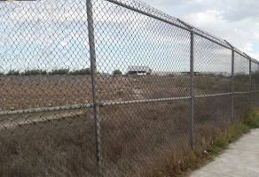 Foto de terreno habitacional en venta en zona industrial periferico gustavo diaz ordaz , loma linda, ramos arizpe, coahuila de zaragoza, 14036232 No. 01