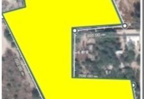 Foto de terreno habitacional en venta en  , zona industrial, san luis potosí, san luis potosí, 10596390 No. 01