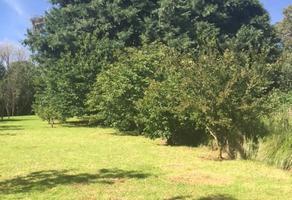 Foto de terreno habitacional en venta en zurco largo , san miguel ajusco, tlalpan, df / cdmx, 19353959 No. 01