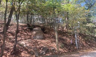 Foto de terreno habitacional en venta en 0 , bosques de san ángel sector palmillas, san pedro garza garcía, nuevo león, 0 No. 01