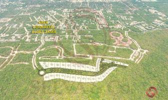 Foto de terreno habitacional en venta en 1 1, aldea zama, tulum, quintana roo, 9055504 No. 02