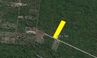 Foto de terreno habitacional en venta en 11 , san francisco de asís, conkal, yucatán, 14278800 No. 01