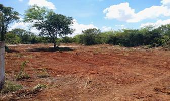 Foto de terreno habitacional en venta en 16 , cholul, mérida, yucatán, 19843307 No. 01