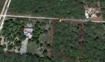 Foto de terreno habitacional en venta en 17 , conkal, conkal, yucatán, 0 No. 01