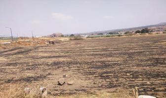 Foto de terreno habitacional en venta en 2 de abril 0, san mateo tepopula, tenango del aire, méxico, 0 No. 01