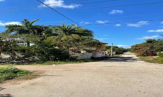 Foto de terreno habitacional en venta en 20 , izamal, izamal, yucatán, 0 No. 01