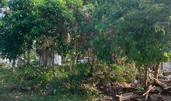 Foto de terreno habitacional en venta en 23 , tulum centro, tulum, quintana roo, 14212032 No. 01