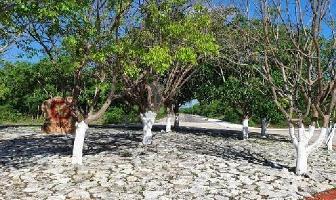 Foto de terreno habitacional en venta en 3 , cosgaya, mérida, yucatán, 0 No. 01