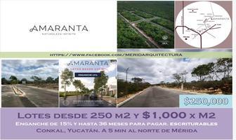 Foto de terreno habitacional en venta en 34 24, conkal, conkal, yucatán, 0 No. 01